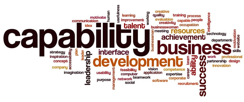 Capability Statement Writing